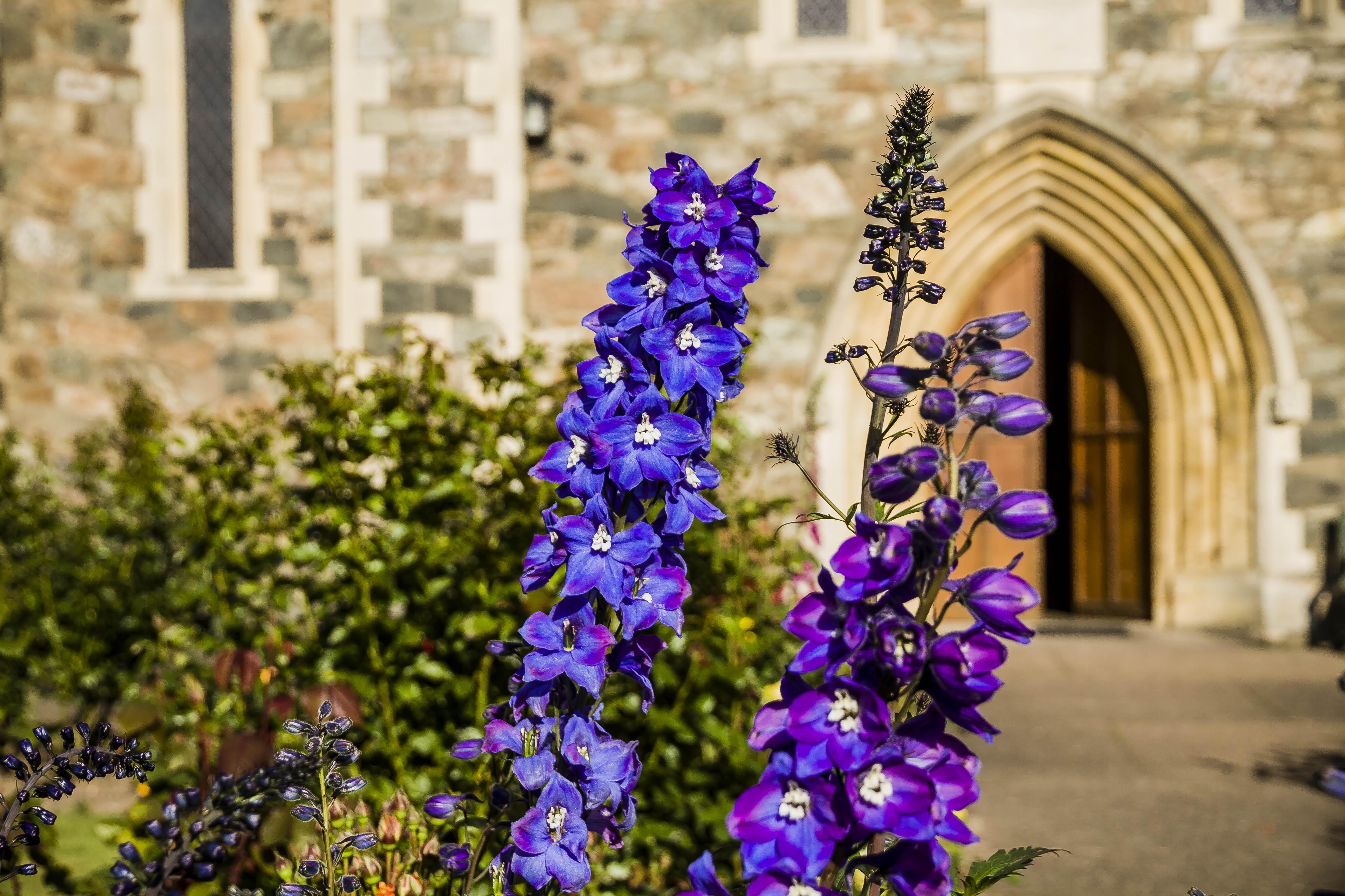 Mount Saint Bernard Abbey – A Cistercian monastic community in the